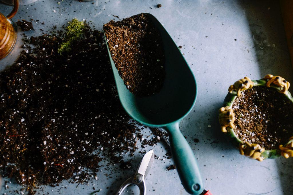 Narzędzia ogrodnicze niezbędne na twojej działce